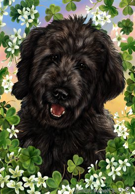 Cheap Goldendoodle Black – Tamara Burnett St Patricks Large Flag