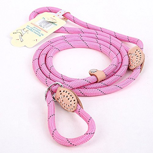 Coolrunner Pet Dog Whisperer Cesar Slip Training Leash Lead Collar For Dogs 10-80 lbs (Pink)