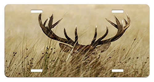 Antler License Plate by Lunarable, Whitetail Deer Fawn in Wilderness Stag in Countryside Rural Hunting Theme, High Gloss Aluminum Novelty Plate, 5.88 L X 11.88 W Inches, Brown Sand Brown (Fawn Whitetail)