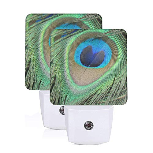 - 2 Set of Nightlight Peacock Feather Plug-in Night Light Warm White LED Nightlight with Auto Dusk to Dawn Sensor, Perfect for Kids Room, Hallway, Bedroom, Kitchen, Bathroom
