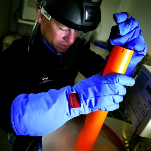 Waterproof Cryo-Gloves, Elbow Length, Large, Each by Tempshield (Image #1)