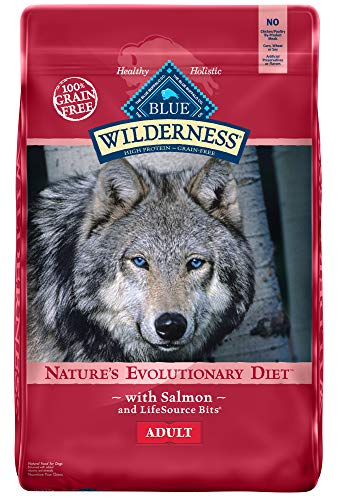 Blue Buffalo Wilderness High Protein Grain Free, Natural Adult Dry Dog Food, Salmon 24-lb (Best Dog Food For The Money)