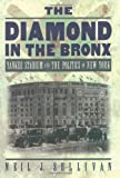 The Diamond in the Bronx: Yankee Stadium and the Politics of New York