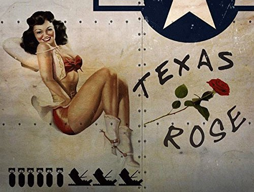Texas Rose Metal Sign, WWII Airplane Nose Art, Pinup Girl, Vintage Decor (Roses Tin Sign)