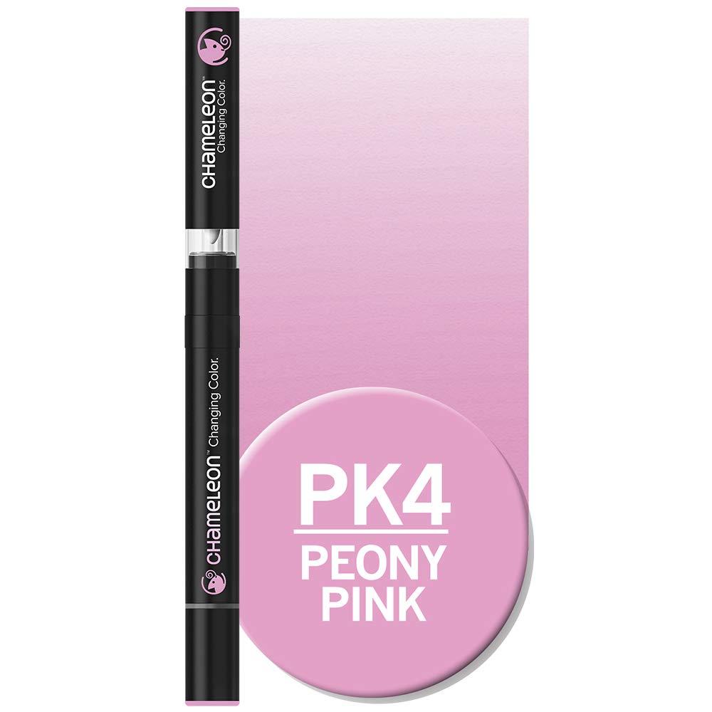 Chameleon Pen Pen Pen - Turquoise BG3 B01FT99P4I | Niedrige Kosten  6ab227