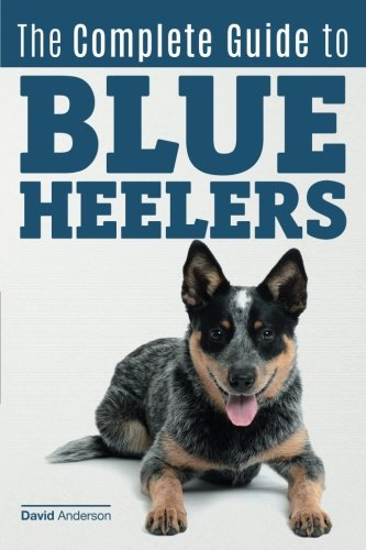 The Complete Guide to Blue Heelers - aka The Australian Cattle Dog. Learn About Breeders, Finding a Puppy, Training, Socialization, Nutrition, Grooming, and Health Care. Over 50 Pictures Included! (Australian Cattle Dog Puppy)