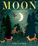 #6: Moon: A Peek-Through Picture Book