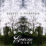 Beauty in Disrepair Album Cover