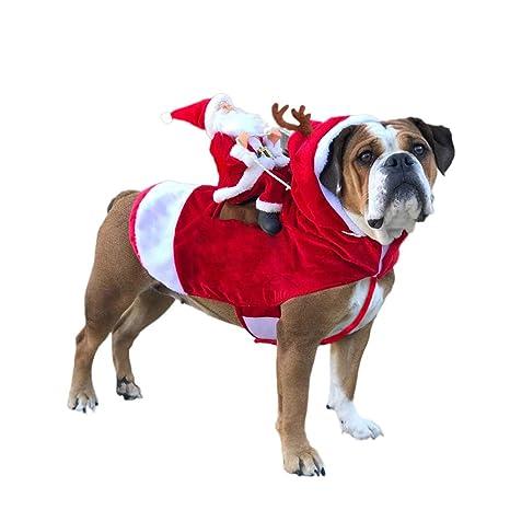 DELIFUR Disfraz de Papá Noel con Renos para Perros pequeños ...