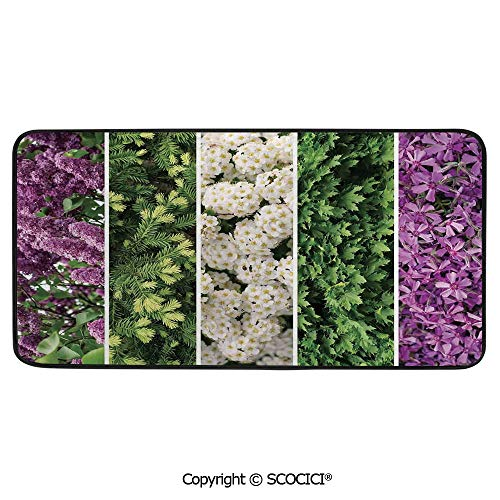 (Rectangular Area Rug Super Soft Living Room Bedroom Carpet Rectangle Mat, Black Edging, Washable,Flower,Collage Mix Diverse Herbs and Blossoming Bouquet)