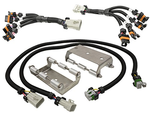 Ls1 Coil Packs (Michigan Motorsports Coil Pack Relocation Bracket Kit with Stainless Steel Brackets and Extension Harness For LS1 LS6)