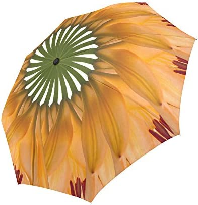 Auto Open and Close for Men and Women Flower Orange Petals Compact Travel Umbrella Windproof Unbreakable