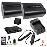 Two Halcyon 1300 mAH Lithium Ion Replacement NP-FV50 Battery and Charger Kit + Memory Card Wallet + Multi Card USB Reader + Deluxe Starter Kit for Sony HDR-CX260V High Definition Handycam 8.9 MP Camcorder and Sony NP-FV50