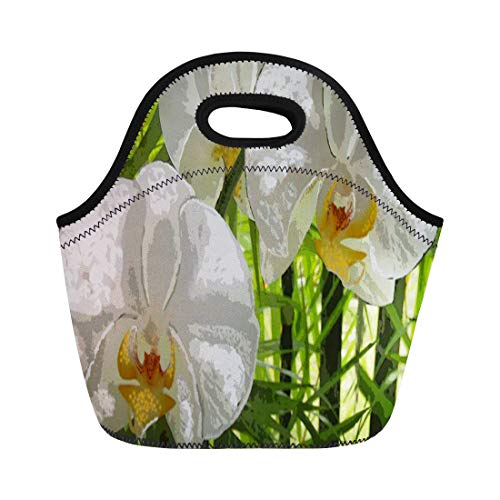 Phalaenopsis Spray (Ablitt Lunch Bags Green Tropical White Orchids Yellow Flower Couch Sofa Chair neoprene lunch bag lunchbox tote bag portable picnic bag cooler bag)