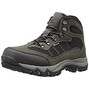 Hi-Tec Men's Skamania Mid Waterproof Hiking Boot, Gull Grey/Black/Goblin Blue, 9 D US