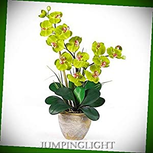 JumpingLight 1026-GR Double Stem Phalaenopsis Silk Orchid Arrangement Artificial Flowers Wedding Party Centerpieces Arrangements Bouquets Supplies 105