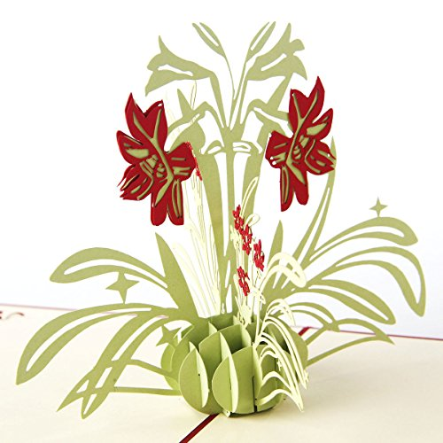(Loyocgo Thank You 3D Pop up Greeting Card Flower Gift to Friends Family Creative Birthday Card to Child Handmade Happy Anniversary Cards for Wife (Pure Daffodils, Red)