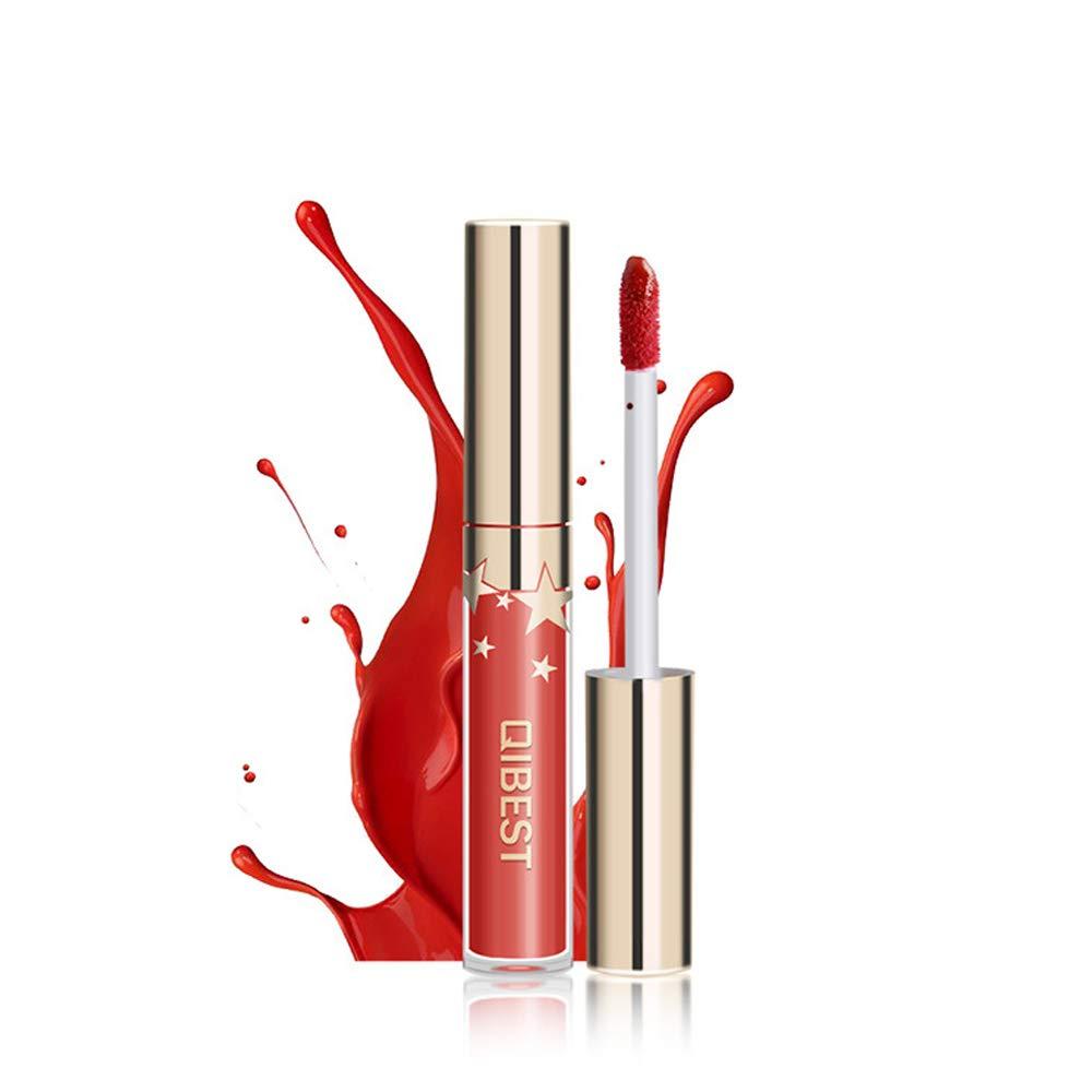 Matte Nude Lipstick Set, 10 Colors Waterproof Long Lasting Lip Gloss Non-Stick Cup Liquid Velvety Lipstick Set (10-1)