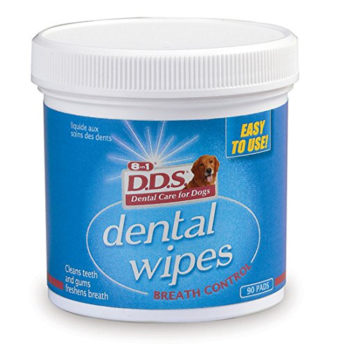 Excel Medicated Dental Wipes, 90 wipes (J7412)