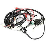 Wiring Loom for BT49QT-12 (WRLM071)