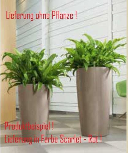 Blumenübertopf Rondo Premium, sonnen-und regenbeständig für Innen und Außen, inklusive Bewässerungsset, Farbe Rot, Ø 32cm Höhe 56cm