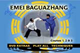 Baguazhang - 8 Trigrams Palm