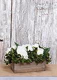 Richland Planter Box Wood 10''x 5'' Set of 6