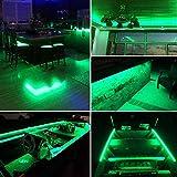 Vbakor Pontoon LED Strip Lights, 12V 5M/16.4FT