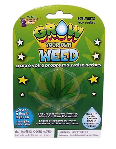 Forum Novelties Grow Your Own Weed Plant Leaf 7 x 4.5 x 8
