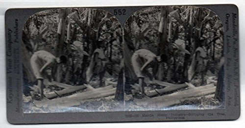 Manila Philippines Hemp Industry Stripping the Tree Antique Stereoview J70529