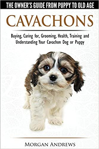 Cavachons The Owner S Guide From Puppy To Old Age Choosing