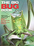 img - for Big Bug Book book / textbook / text book
