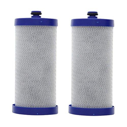 Aqua Fresh Replacement Water Filter for Frigidaire FRS23LH5DSR / FRS23R4A Refrigerator AquaFresh (2 Pk)