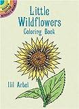 Little Wildflowers Coloring Book, Ilil Arbel, 0486283178