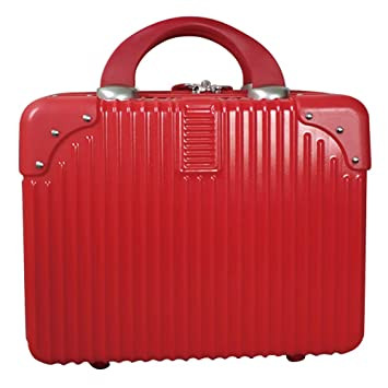 b855b3171976 Amazon.com : Lzttyee Mini Hard Shell Cosmetic Case Portable ...