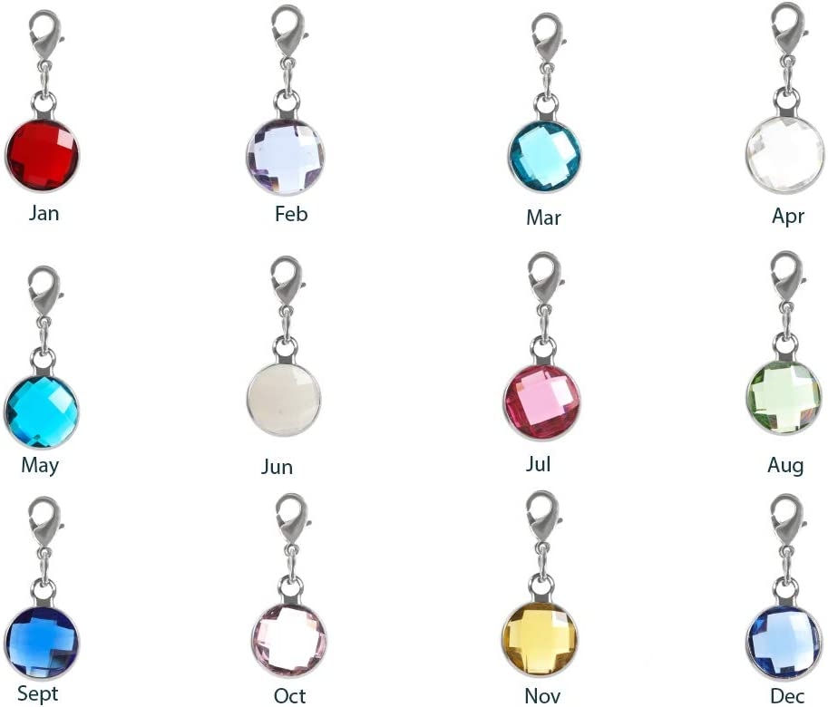 Birthstone Charms Sterling Silver Plated Charms Assorted Charms 8mm Birthstone Pendants Austrian Crystal Charms Birthstone Set 12pcs