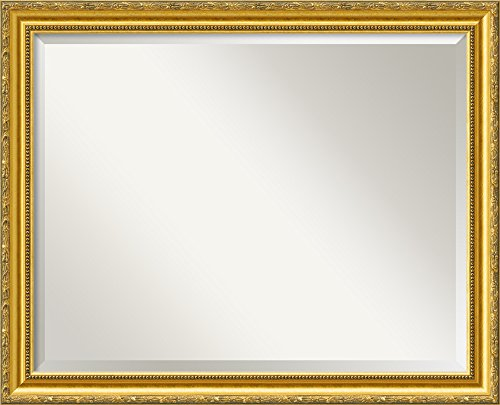 Amanti Art Framed Colonial Embossed Gold Solid Wood Wall Mirrors, Glass Size 28x22,