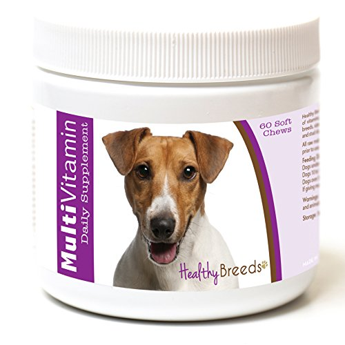 Healthy Breeds Dog One A Day Vitamin Soft Chews for Jack Russell Terrier - OVER 200 BREEDS - For Small Medium & Large Breeds - Easier Than Liquid or Powders - 60 Chews