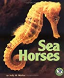 Sea Horses, Sally M. Walker, 0822530511