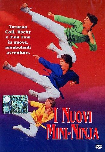 I Nuovi Mini Ninja [Italia] [DVD]: Amazon.es: Sean Fox ...