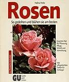 img - for Rosen So gedeihen und bl hen sie am besten book / textbook / text book