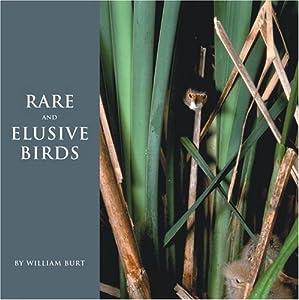 Rare and Elusive Birds of North America William Burt