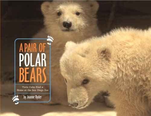 Read Online A Pair of Polar Bears: Twin Cubs Find a Home at the San Diego Zoo ebook