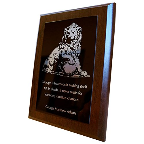 Custom Laser Engraved Plaque Awards (6