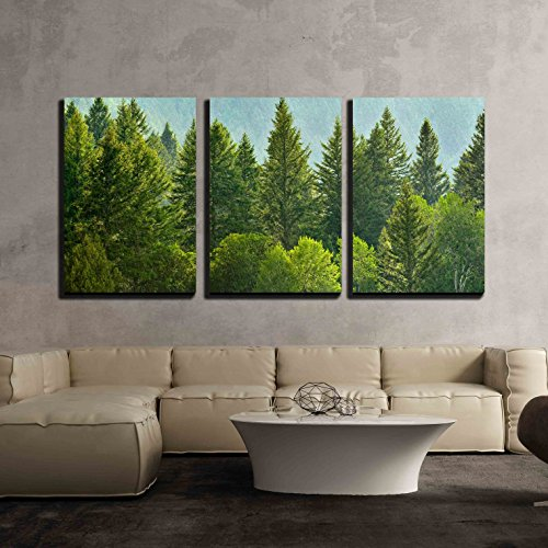 wall26 - 3 Piece Canvas Wall Art - Forrest of Green Pine Trees on Mountainside with Rain - Modern Home Decor Stretched and Framed Ready to Hang - 24