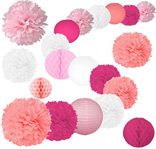 20 Pcs Party Tissue Paper Pom Poms Set Decoration for Birthday, Baby Shower,Wedding-Pink Shades Décor- (12