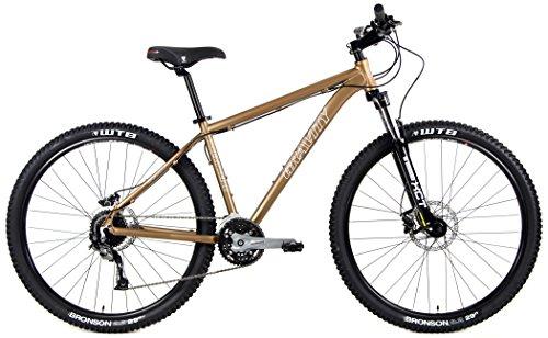 - NEW Gravity 29 Point 2 WTB TCS Tubeless Compatible Hydraulic Disk Brake 29er Mountain Bike (Matt Bronze, 19
