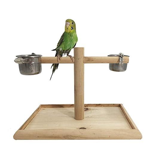 ChengBeautiful Parque De Aves Suministros Loro Jaula de pájaro ...