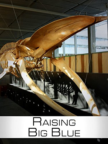 Raising Big Blue (Assembly Natural)