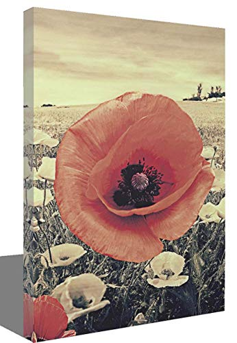 Canvas Wall Art for Living Room Red Poppy Decor Painting White and Black Background Floral Pictures Print Artwork 12x16inch x3Pieces